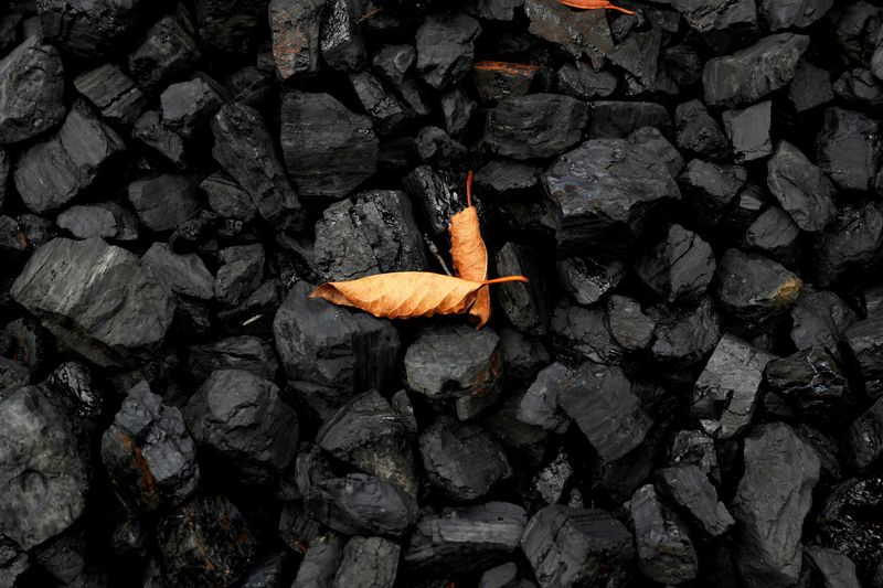 Analysis-China's pledge to cut project finance is the 'new normal' for coal