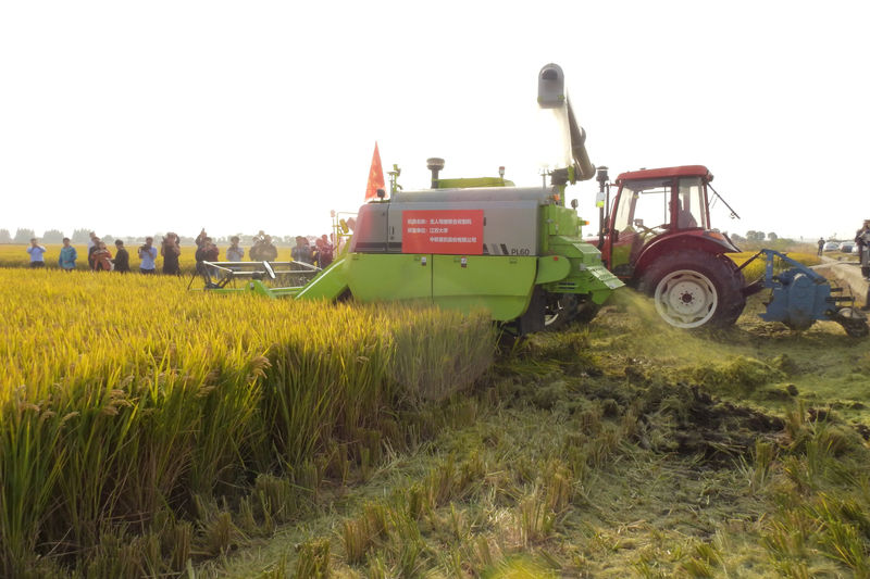 China commerce ministry says regrets WTO ruling on wheat, rice subsidies
