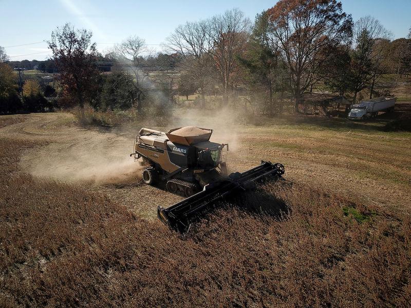 China January soybean imports from U.S. nearly double vs. December: customs